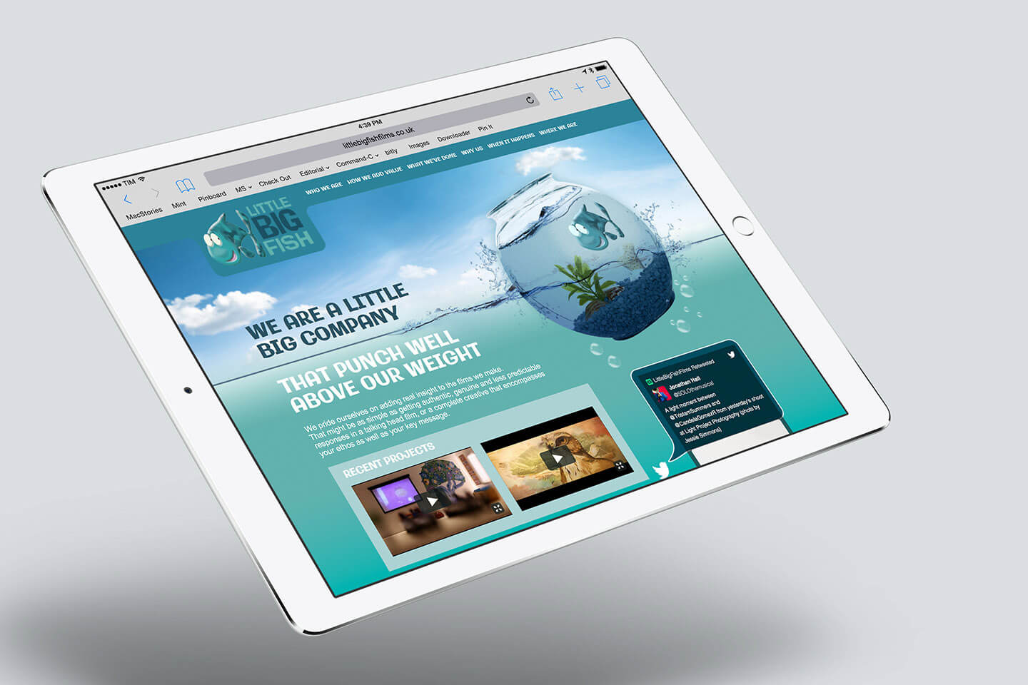 Little Big Fish Email Website homepage visual